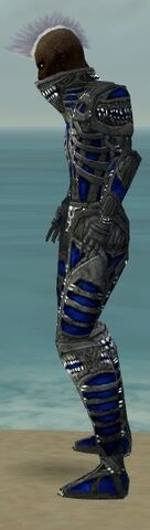 File:Necromancer Necrotic Armor M dyed side.jpg