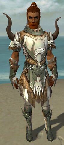 File:Paragon Norn Armor M gray front.jpg