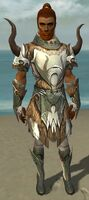 Paragon Norn Armor M gray front