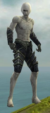 File:Necromancer Elite Cultist Armor M gray arms legs front.jpg