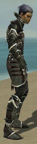 File:Necromancer Elite Kurzick Armor M gray side.jpg