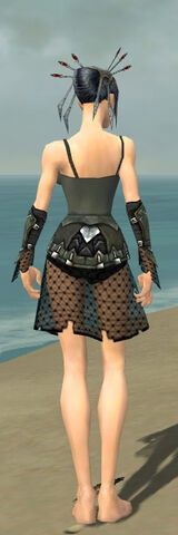 File:Necromancer Cabal Armor F gray arms legs back.jpg