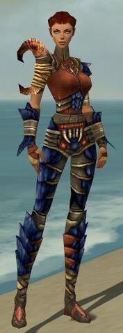 File:Ranger Elite Drakescale Armor F dyed front.jpg