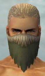 File:Ranger Fur-Lined Armor M gray head front.jpg