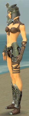 File:Warrior Elite Gladiator Armor F gray side.jpg
