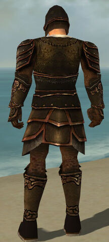 File:Warrior Shing Jea Armor M dyed back.jpg