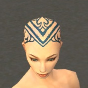 File:Monk Asuran Armor F dyed head front.jpg