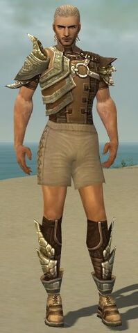 File:Ranger Asuran Armor M gray chest feet front.jpg