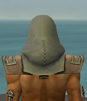 File:Dervish Istani Armor M gray head back.jpg