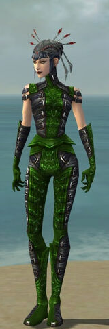 File:Necromancer Ascalon Armor F dyed front.jpg
