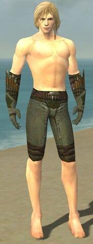 File:Ranger Elite Druid Armor M gray arms legs front.jpg