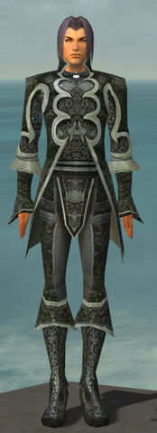 File:Elementalist Elite Canthan Armor M gray front.jpg