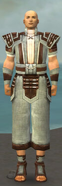 Monk Censor Armor M gray front