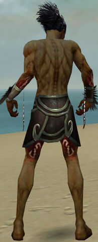 File:Necromancer Sunspear Armor M gray arms legs back.jpg