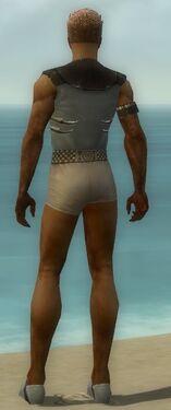 Dervish Primeval Armor M gray chest feet back