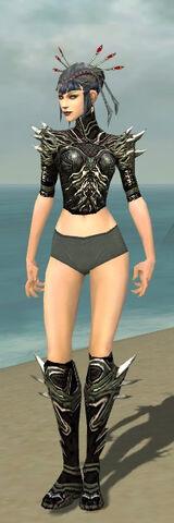 File:Necromancer Luxon Armor F gray chest feet front.jpg