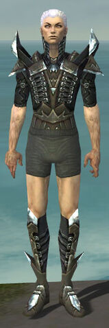 File:Necromancer Profane Armor M gray chest feet front.jpg