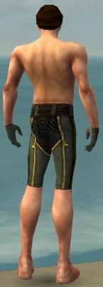 File:Mesmer Asuran Armor M gray arms legs back.jpg