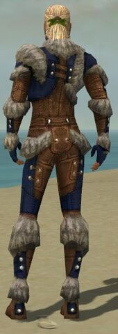 File:Ranger Fur-Lined Armor M dyed back.jpg