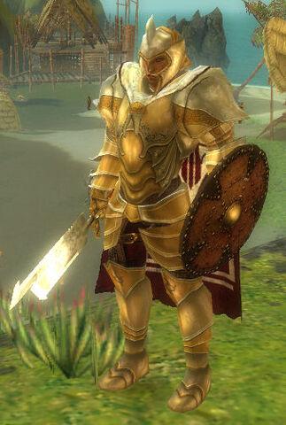 File:Justiciar Rhynnon.jpg