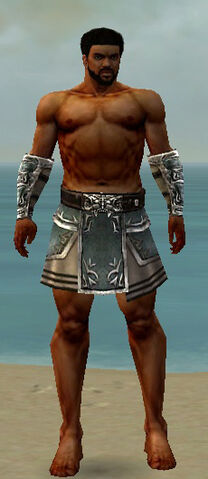 File:Warrior Istani Armor M gray arms legs front.jpg
