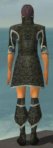 File:Elementalist Elite Canthan Armor M gray chest feet back.jpg