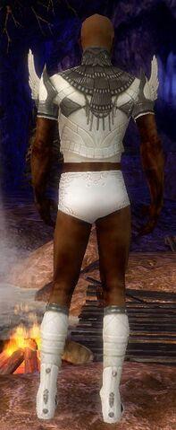 File:Paragon Vabbian Armor M gray chest feet back.jpg