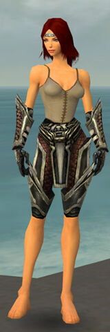 File:Warrior Elite Kurzick Armor F gray arms legs front.jpg
