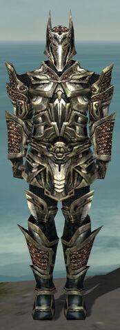 File:Warrior Elite Kurzick Armor M gray front.jpg