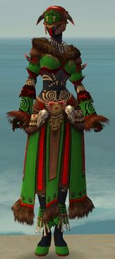 Ritualist Norn Armor F dyed front