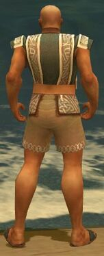 Monk Tyrian Armor M gray chest feet back