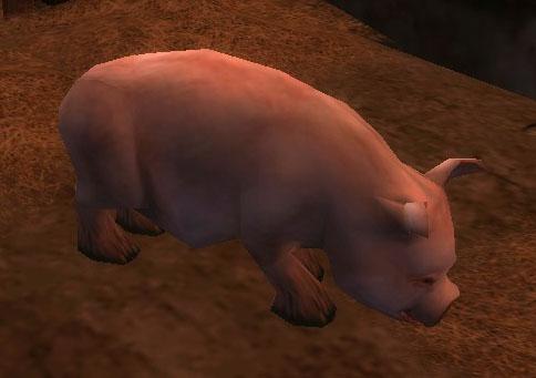 File:Pig (Ambient).jpg