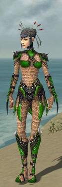 Necromancer Elite Cabal Armor F dyed front