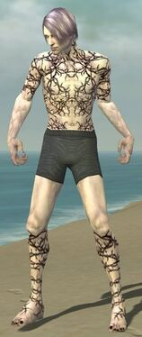 Necromancer Elite Scar Pattern Armor M gray chest feet front