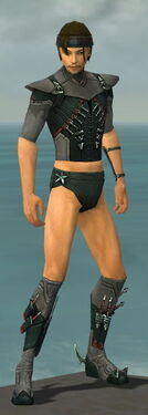 Assassin Seitung Armor M gray chest feet front