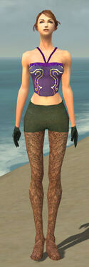 Mesmer Performer Armor F gray arms legs front