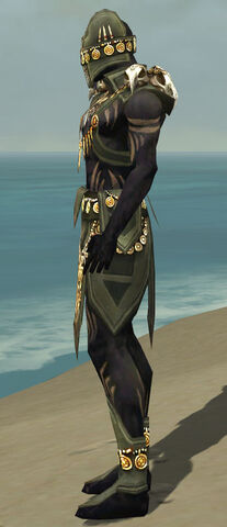 File:Ritualist Elite Kurzick Armor M gray side.jpg