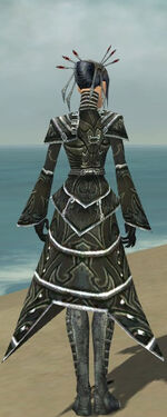 Necromancer Fanatic Armor F gray back
