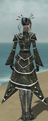 File:Necromancer Fanatic Armor F gray back.jpg