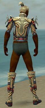Assassin Monument Armor M gray chest feet back