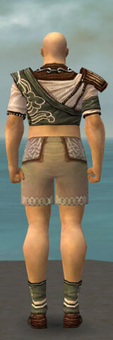 File:Monk Canthan Armor M gray chest feet back.jpg