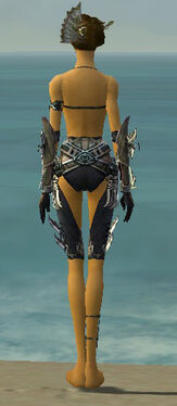 Assassin Asuran Armor F gray arms legs back