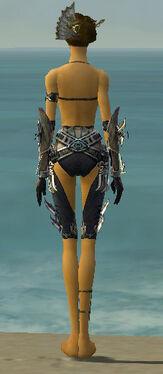 Assassin Asuran Armor F gray arms legs back