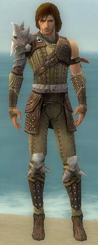 File:Ranger Studded Leather Armor M gray front.jpg