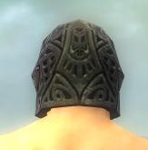 File:Warrior Elite Platemail Armor M gray head back.jpg