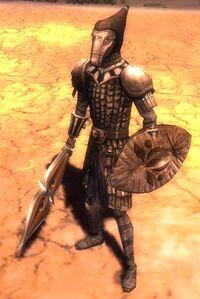 Minion of Joko (Warrior)