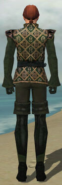 Mesmer Courtly Armor M gray back