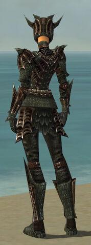 File:Warrior Elite Dragon Armor F gray back.jpg