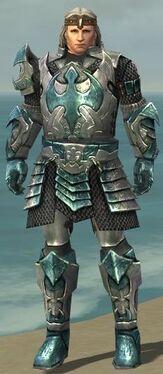 Warrior Elite Templar Armor M nohelmet
