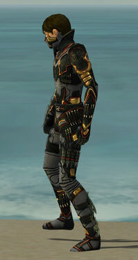 Assassin Elite Kurzick Armor M gray side